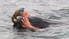 golfinhos-viram-atracao_10