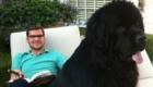 cachorro-preto-enorme