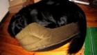 cama-pequena-pro-cachorro