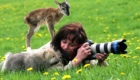 foto_animais