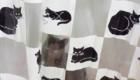 gatos-camuflagem-banho