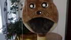gatos-camuflagem-brinquedo