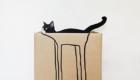 gatos-camuflagem-caixa