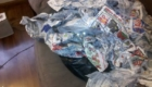 gatos-camuflagem-jornal