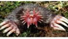 synapsebristol.blogspot.com