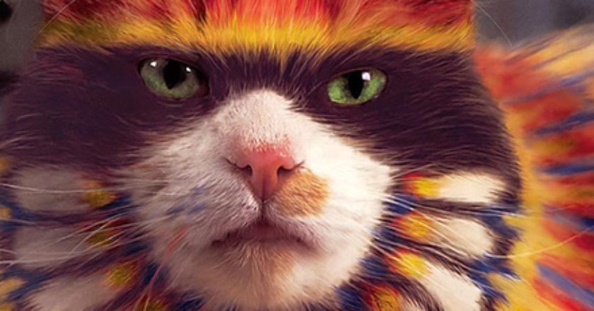 Reprodução/Why Paint Cats