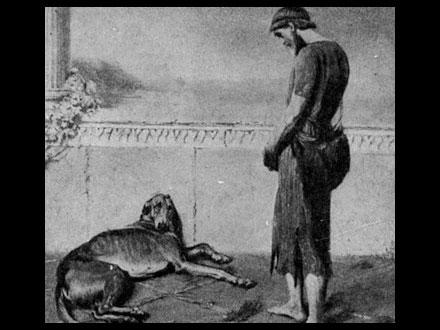Argus - Cão famoso