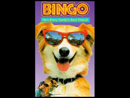 Bingo - Cão famoso