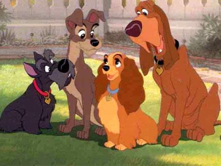 Dama - Cão famoso