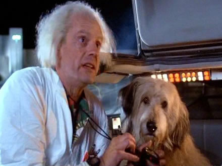 Einstein - Cão famoso