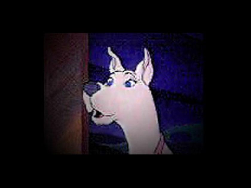 Scooby Dee