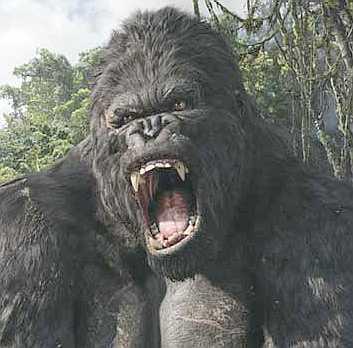 King Kong - Pet famoso